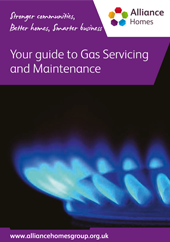 Cover of Your guide to gas servicing with a burning gas hob
